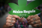 La légalisation du cannabis au Mexique attise les convoitises ! (Video)